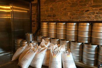 ADULT SWIM at Cellar Door Brewing Co.